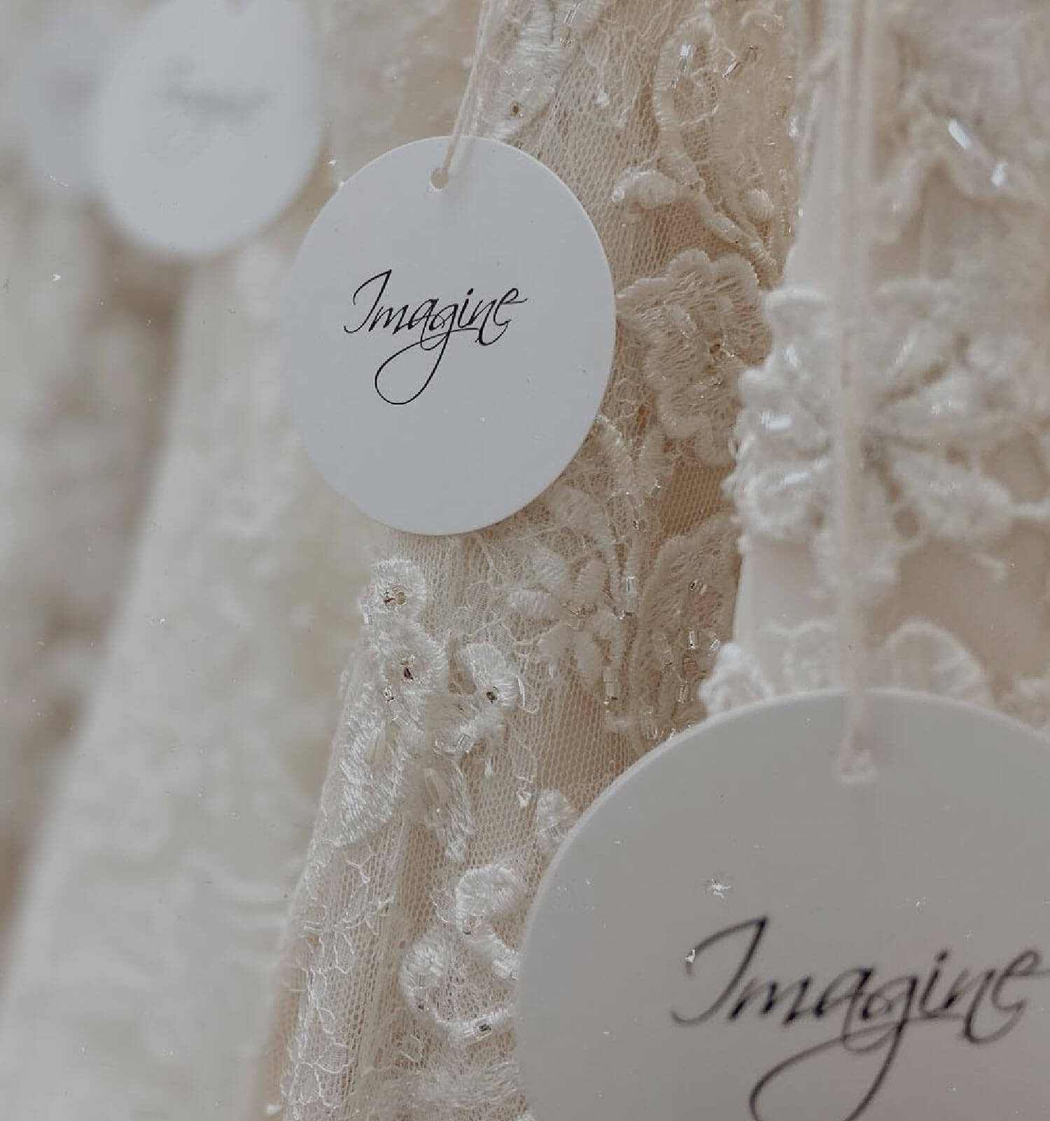 Photo of Molle Bridals Imagine Collection Dress Details