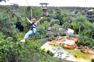 Bachelorette Party Alternatives in Florida - Zip lining